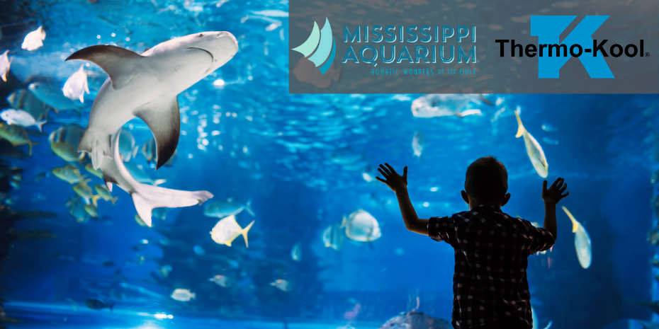 Mississippi Aquarium- Blog